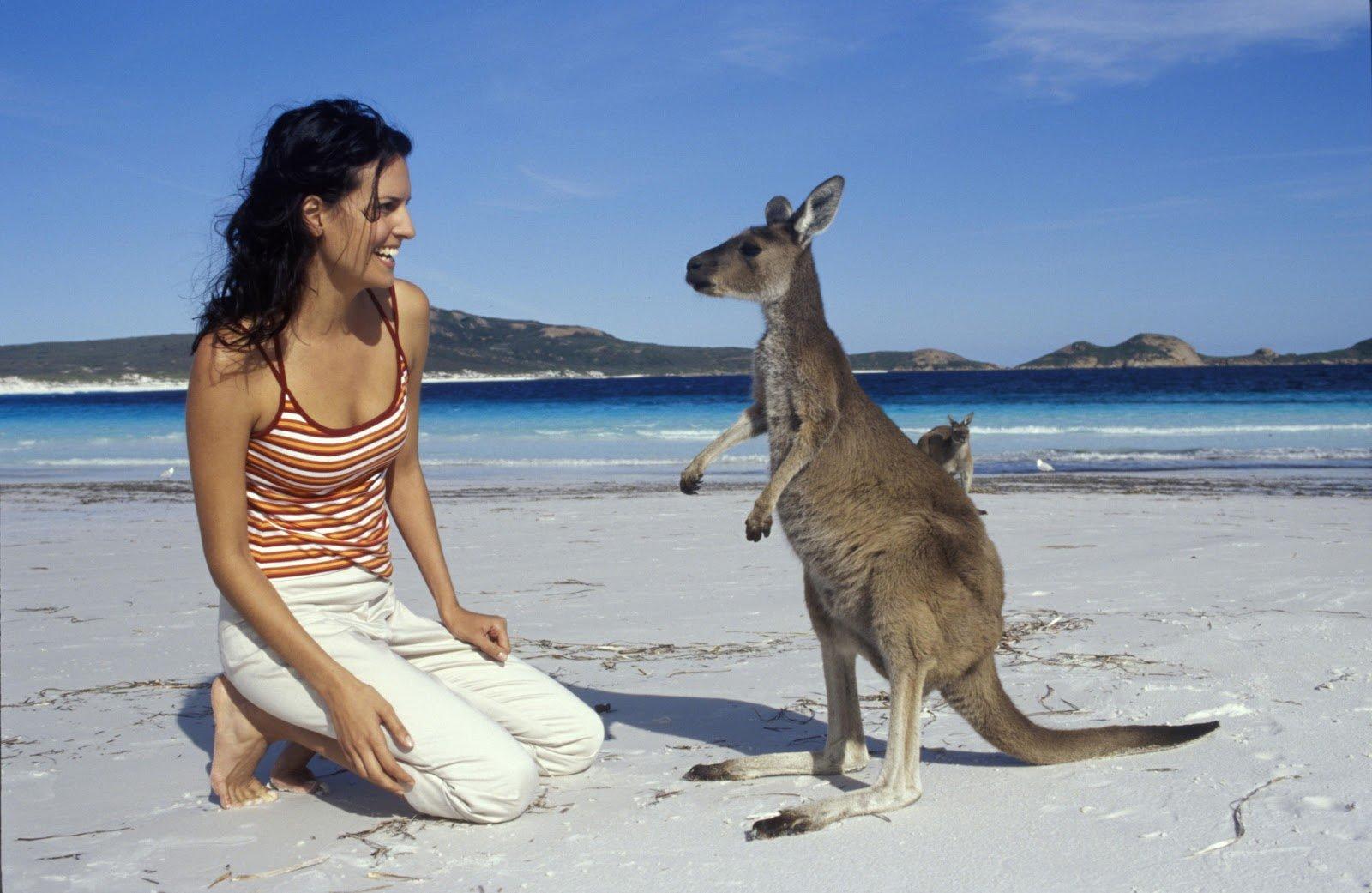 картинка реклама австралии что